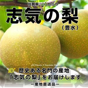唐津の名品梨!JAからつ 志気の梨(豊水)約5キロ(12玉から16玉)なし 梨 ナシ|sanchokudayori