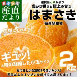 佐賀県より産地直送 JAからつ はまさき 小玉SSサイズ 2...