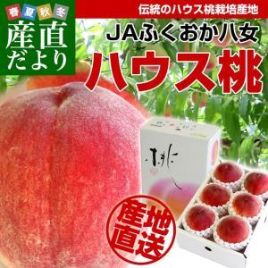 福岡県より産地直送 JAふくおか八女 ハウス桃 1キロ箱(5...