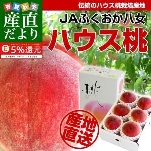 福岡県より産地直送 JAふくおか八女 ハウス桃 1キロ箱(5玉から6玉)送料無料 sanchokudayori