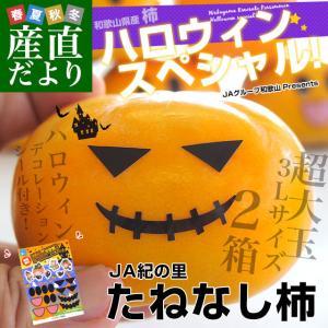 和歌山県より産地直送 JA紀の里 たねなし柿 3Lサイズ 2箱セット 合計3キロ (約1.5キロ×2箱)送料無料 カキ かき 柿|sanchokudayori