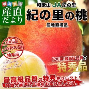 送料無料 和歌山県より産地直送 JA紀の里 紀の里の桃 特秀品 1.8キロ(6玉から8玉) 桃 もも|sanchokudayori