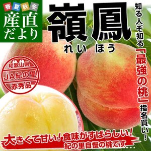 送料無料 和歌山県より産地直送 JA紀の里 嶺鳳(れいほう) 赤秀品 1.8キロ(6玉から8玉) 桃 もも|sanchokudayori