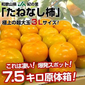 送料無料 和歌山産 JA紀の里 たねなし柿 極上の超大玉 3L 7.5キロ 28玉 かき カキ|sanchokudayori