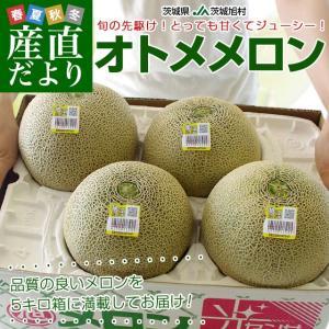 送料無料 茨城県産 JA茨城旭村 オトメメロン 2Lから3L...
