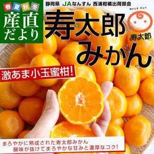 静岡県産 JAなんすん 西浦柑橘出荷部会 寿太郎みかん 2S...