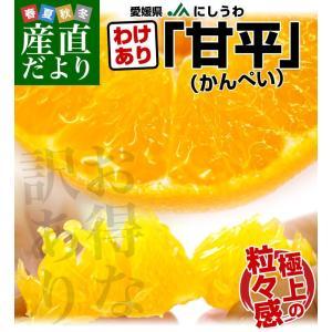 送料無料 愛媛県産 JAにしうわ 訳あり 甘平(かんぺい)5...