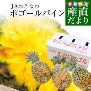 沖縄県JAおきなわより産地直送します。  商品名:パイナップル(ボゴールパイン3玉) 内容量:約1....