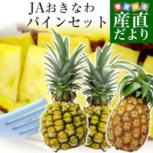 商品名:パイナップル(ピーチパイン1玉・ボゴールパイン2玉) 内容量:約1.8キロ(約600g×3玉...