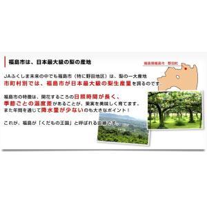 送料無料 福島県より産地直送 JAふくしま未来...の詳細画像3