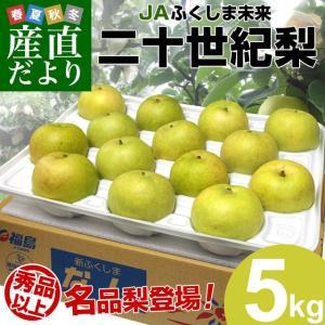 送料無料 福島県より産地直送 JAふくしま未来 二十世紀梨 秀品 約5キロ (12玉から16玉) 梨 なし|sanchokudayori
