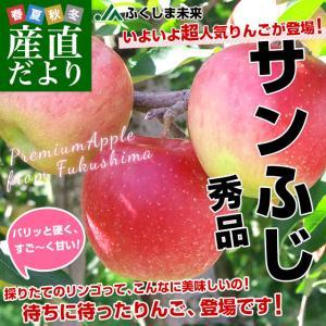 福島県より産地直送 JAふくしま未来「サンふじりんご」秀品 約2.8キロ(8玉から10玉) ×2箱 送料無料 林檎 リンゴ|sanchokudayori