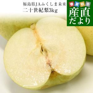 福島県より産地直送 JAふくしま未来 二十世紀梨 秀品 約3キロ (6玉から10玉) なしナシ20世紀なし 送料無料|sanchokudayori