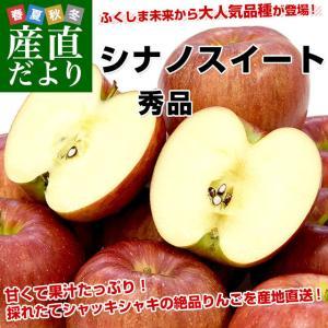 福島県より産地直送 JAふくしま未来「シナノスイート」秀品 約2.8キロ(8玉から10玉)×2箱 りんご 林檎 リンゴ 送料無料|sanchokudayori