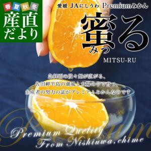 送料無料 愛媛県より産地直送 JAにしうわ みつる共撰プレミアムみかん 蜜る(みつる) SからLサイズ 約5キロ(40から60玉) 蜜柑 みかん ミカン