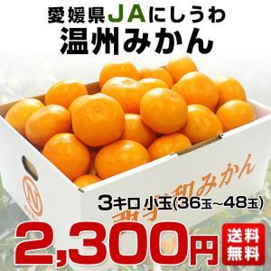 送料無料 愛媛県産 JAにしうわ 西宇和温州み...の詳細画像1
