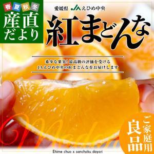 愛媛県より産地直送 JAえひめ中央 紅まどんな 良品 3LからLサイズ 約3キロ(10玉から15玉) 紅マドンナ オレンジ|sanchokudayori