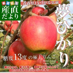 青森県より産地直送 JAつがる弘前 夢ひかり 3キロ(9玉から13玉) 林檎 リンゴ りんご 送料無料 sanchokudayori