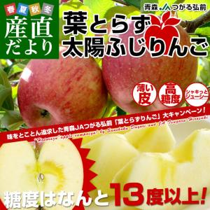 お一人様2箱まで! 送料無料 青森県より産地直送 JAつがる弘前 葉とらず太陽ふじりんご 3キロ(9玉から13玉) 糖度13度以上 林檎 リンゴ