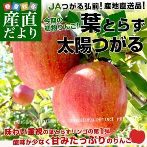 青森県より産地直送 JAつがる弘前 葉とらず太陽つがる 約3キロ(9玉から13玉) リンゴ りんご 林檎 sanchokudayori