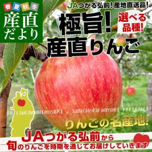 青森県より産地直送 JAつがる弘前 極旨・産直りんご 選べる品種 約3キロ(9玉から13玉) 林檎  送料無料|sanchokudayori