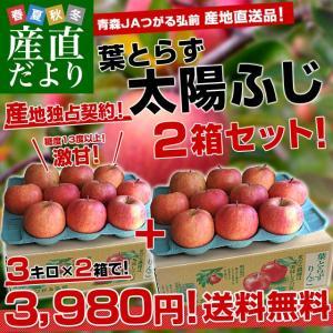 送料無料 青森県より産地直送 JAつがる弘前 葉とらず太陽ふ...
