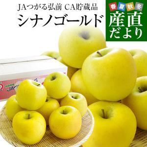 青森県より産地直送 JAつがる弘前 シナノゴールド CA貯蔵品 約3キロ(9玉から13玉)送料無料 りんご しなのごーるど |sanchokudayori