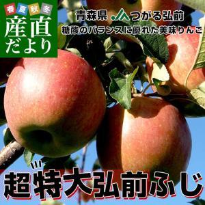 青森県より産地直送 JAつがる弘前 弘前ふじ 超大玉 5キロ (9玉から11玉) 送料無料 りんご リンゴ 林檎|sanchokudayori