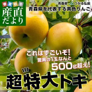 青森県より産地直送 JAつがる弘前 トキ 超大玉 5キロ (9玉から10玉) 送料無料 りんご リンゴ 林檎|sanchokudayori