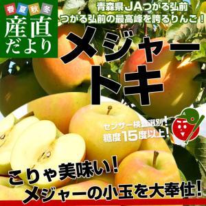 青森県より産地直送 JAつがる弘前 弘前のりんご メジャー トキ 3キロ (小玉 13玉入り) 送料無料|sanchokudayori