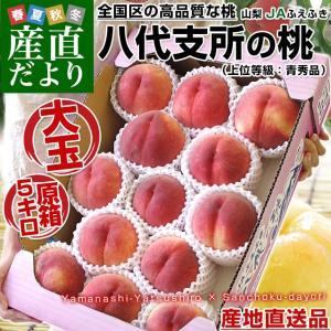 山梨県より産地直送 JAふえふき 八代支所の桃 上位等級:青秀品 5キロ(13玉から15玉) もも 桃 モモ|sanchokudayori