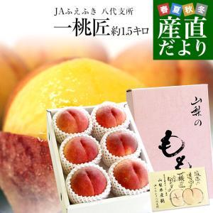 送料無料 山梨県より産地直送 JAふえふき八代支所 八代の特...
