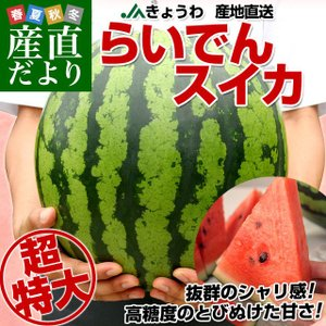 北海道より産地直送 JAきょうわ らいでんスイカ 超特大 優品5Lサイズ 10キロ以上 すいか 西瓜 送料無料|sanchokudayori