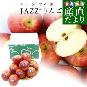 ニュージーランド産 JAZZりんご(品種:サイフレッシュ)約2キロ(11から15玉入)リンゴ 林檎 送料無料 市場発送|sanchokudayori