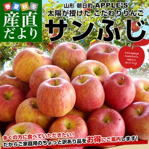 山形県より産地直送 山形朝日町APPLE'S サンふじりんご 約9から10キロ 送料無料 林檎 リンゴ|sanchokudayori