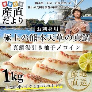 熊本県 天草から 産地直送品!極上の熊本天草の真鯛「真鯛湯引き柚子〆ロイン」合計約1キロ(4枚入り) sanchokudayori