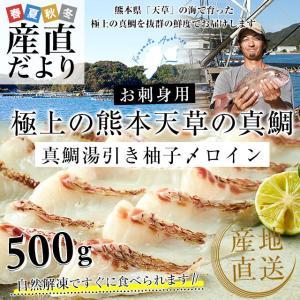 熊本県 天草から 産地直送品!極上の熊本天草の真鯛「真鯛湯引き柚子〆ロイン」約500g(2枚入り) sanchokudayori