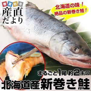 北海道から産地直送 北海道産 新巻き鮭(甘塩) まるごと1尾 2キロ 送料無料 さけ サケ|sanchokudayori