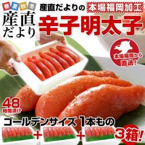 福岡加工 辛子明太子 ゴールデンサイズ 1本もの 約280g(6から7本)×3箱 送料無料 |sanchokudayori