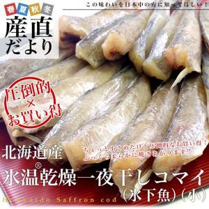 北海道産 コマイ(氷下魚)の氷温乾燥一夜干し 約600g(200g×3袋) 送料無料 |sanchokudayori
