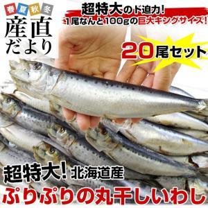 北海道産 超特大いわし丸干し 巨大キングサイズ 20尾セット 2キロ (1尾100g以上×20尾) 送料無料 |sanchokudayori