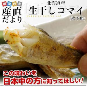 送料無料 北海道より直送 北海道産 コマイ(氷下魚) 一夜干し 大ボリューム 1キロ(500g(15尾前後)×2箱) コマイ こまい