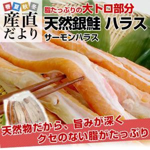 送料無料 天然銀鮭のハラス(希少な腹身の部位) ロシア産 1キロ|sanchokudayori