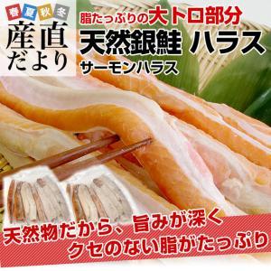 送料無料 天然銀鮭のハラス(希少な腹身の部位) ロシア産 1キロ×2P|sanchokudayori