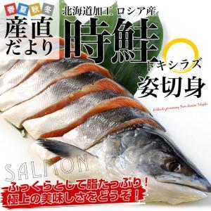 北海道加工 時鮭(トキシラズ)<1尾> 姿切身 約2キロ 送料無料 ロシア産 |sanchokudayori