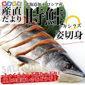 北海道加工 時鮭(トキシラズ)<半身> 姿切身 約1キロ 送料無料 ロシア産|sanchokudayori