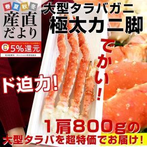 北海道から直送 大型タラバガニ 極太カニ脚 総重量800g 1肩 送料無料 かに カニ脚 蟹足|sanchokudayori