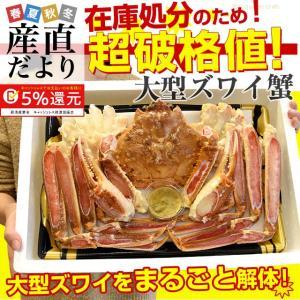 超大型の生ズワイガニ(カニみそ付) まるごと1尾 解体 約1キロ 送料無料 生ズワイ蟹 生ずわい蟹 カニ鍋 産直だより|sanchokudayori
