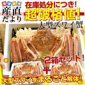 在庫処分価格!超大型の生ズワイガニ(カニみそ付)まるごと1尾 たっぷり2箱セット(約1キロ×2箱)生ズワイ蟹 生ずわい蟹 カニ鍋 産直だより|sanchokudayori