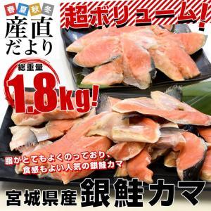 銀鮭のカマ 超ボリューム1.8キロ (360g×5袋)送料無料 ぎんさけ さけかま|sanchokudayori